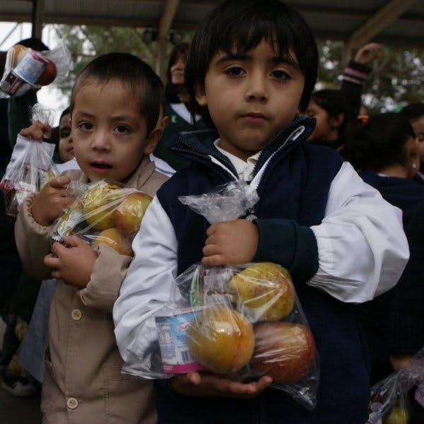 Red de Alimentos: Queremos que no sea opción para las empresas destruir mermas comestibles