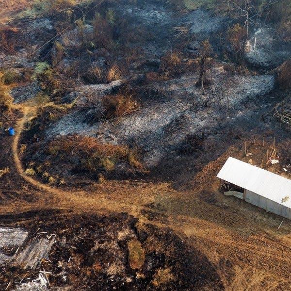 Jefe del Centro Nacional de Alerta Temprana de la Onemi: Solo La Araucanía posee 25 incendios