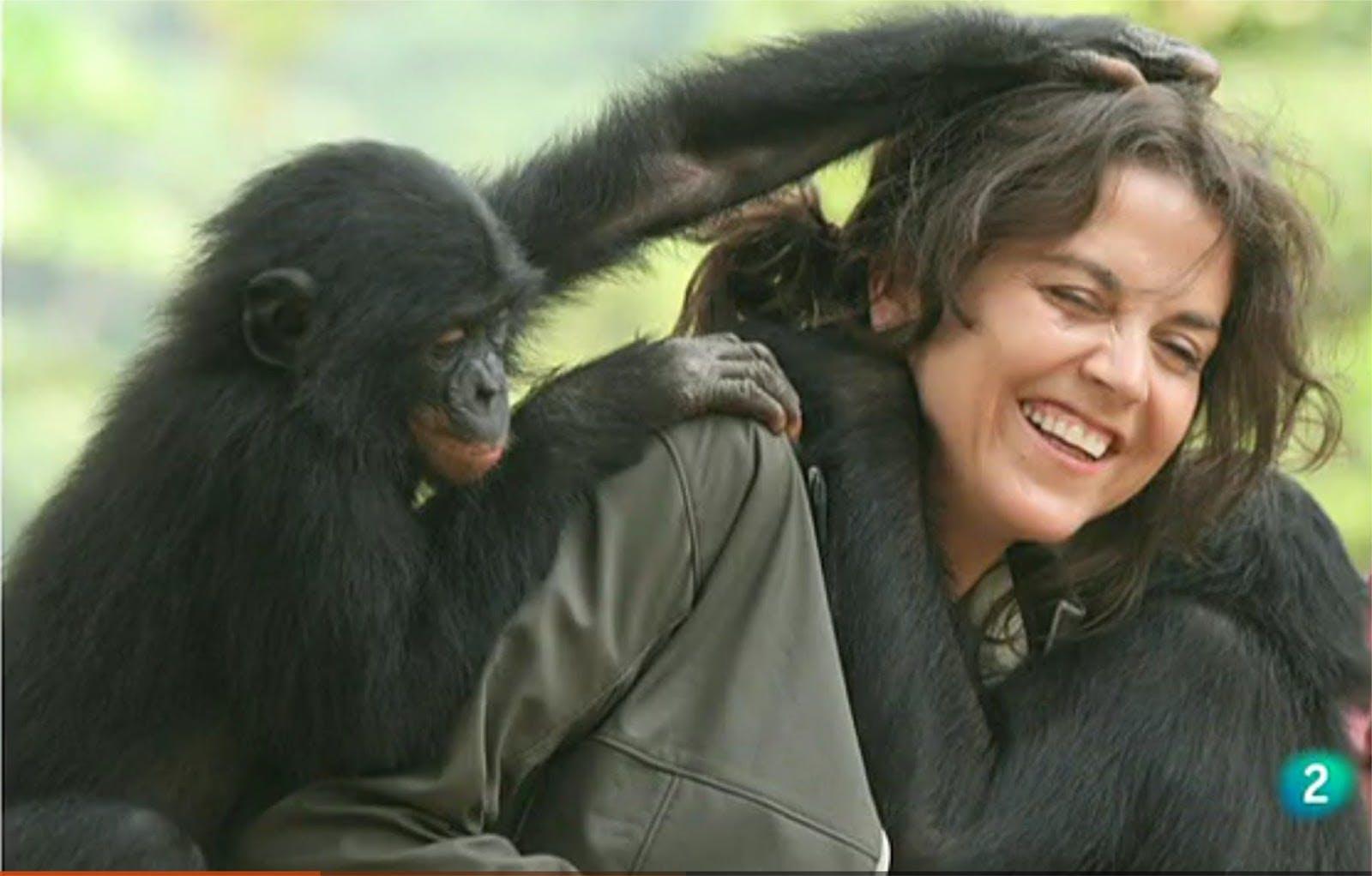 Isabel Behncke, parte 1: Travesía tras nuestros primos evolutivos  - Sec@s - Emisor Podcasting