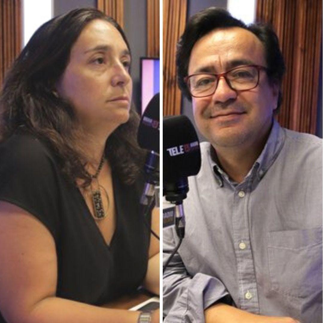 Naudón y Fuentes por debate fecha del plebiscito y los planes de nueva normalidad